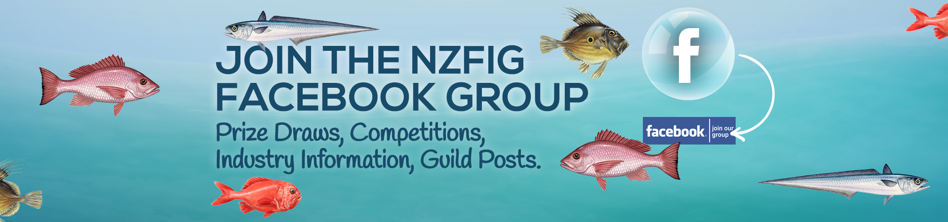NZFIG_J001011_Website_Banner_v4